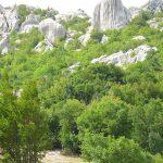 Pramogos Kroatijoje atmintyje ilgam